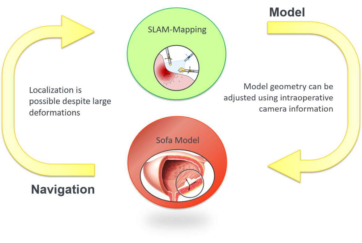 Network of Modeling and Navigation